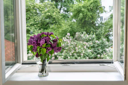 Beautiful spring lilac blossoms in a glass vase at open window. Comfort home zone. Good moments, reducing stress concept