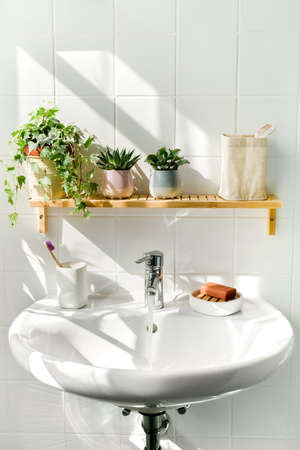 Close up of white sink in bathroom in eco-froendly style. Many green plants and sustainable products. Shadows from sunlight on background. Zero waste, eco friendly products, sustainability. Wellness