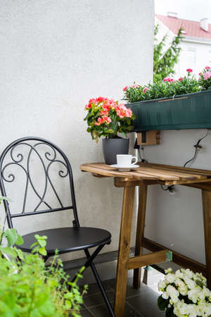 Cosy green balcony with greens and flowers on summer time. Home comfort zone. Hobby gardening
