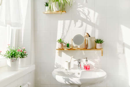 White bathroom in eco friendly style with a sink next to a window at sunny day. Green plans on wooden bamboo shelves and shadows on the background. Zero waste and sustainable life style. Wellness