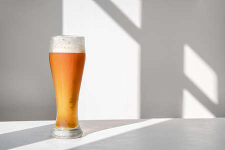 Glass of beer on table against white wall with graphic shadows. Minimalistic still life with natural light. Oktoberfest. Copy space Stock Photo