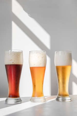 Different sorts of beer in glasses on white background with graphic shadows. Minimalistic composition with natural light. Oktoberfest. Copy space