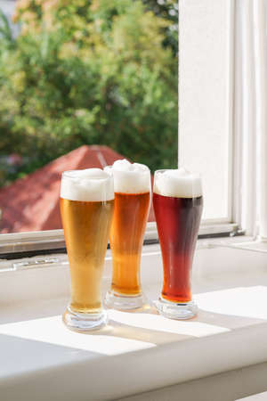 Three different sorts of beer on windowsill against green background. Oktoberfest holiday. New normal. Life style concept. Natural light at sunny day