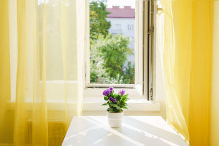 Room with big window and bright yellow curtains. Positive colors. Illuminating yellow. Stress reducing concept. Comfort zone. Interiors Stock Photo