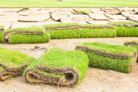 displace: Rolls of green grass, laying in progress  Stock Photo