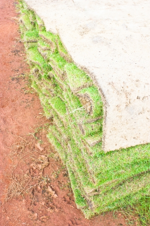Folded of green grass sheets as layers. Stock Photo - 16746859