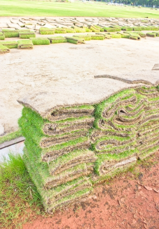 Folded of green grass sheets as layers. Stock Photo - 16746849