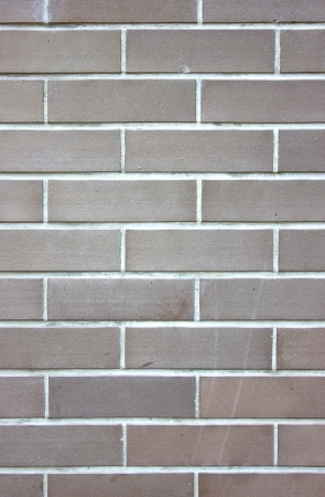skillfully: Brick wall background.