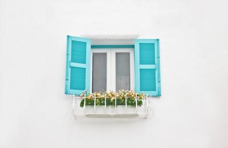 aqua flowers: Aqua window with flowers ornament