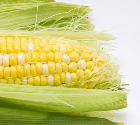 Close up of sweetcorn  photo