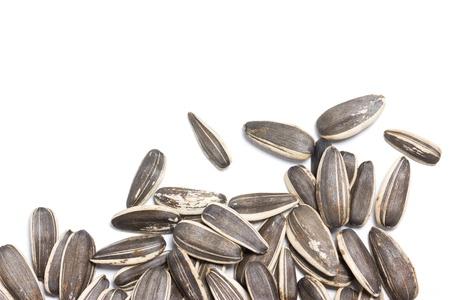 semillas de girasol: Las semillas de girasol en el fondo blanco