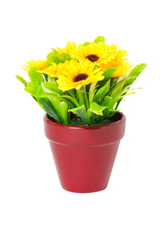 Artificial sunflowers with clay pot isolated on white background. photo