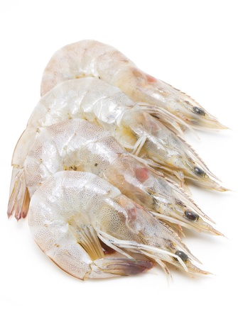 Whiteleg shrimp isolated on white background. photo