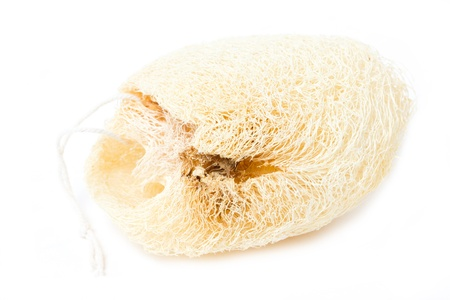 Natural loofah sponge isolated on white. Stock Photo - 20468177