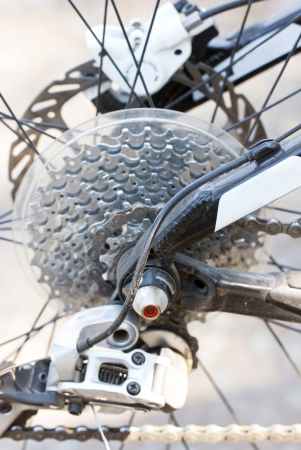rack wheel: Rear mountain bike cassette on the wheel with chain. Stock Photo