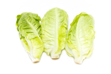Baby Cos lettuce isolated on white  photo