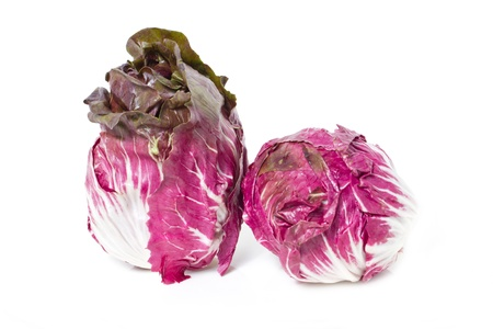 Radicchio isolated on white  photo