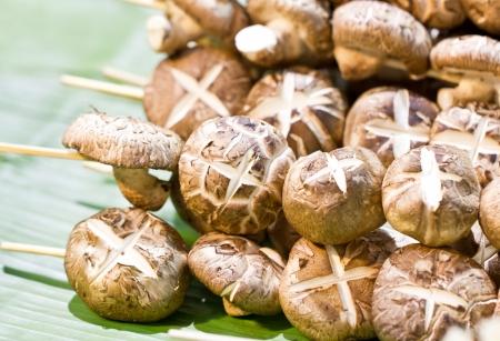 Shiitake mushroom with skewers on banana leaf  版權商用圖片