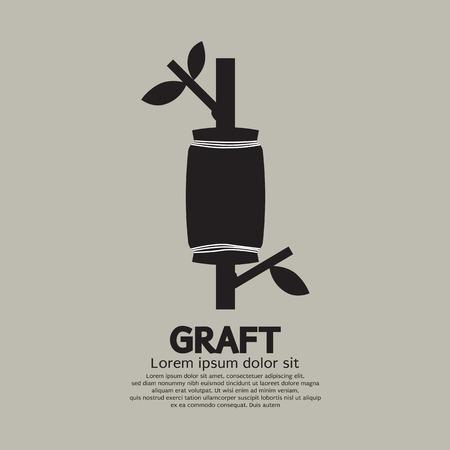 graft: Graft A Tree Gardening Cultivate Method Vector Illustration Illustration