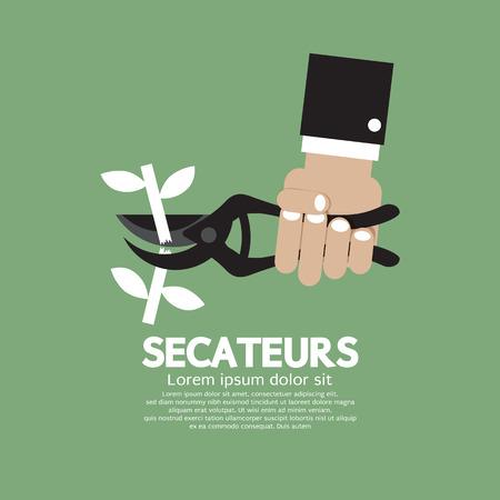 shear: Secateurs Gardening Tool Vector Illustration
