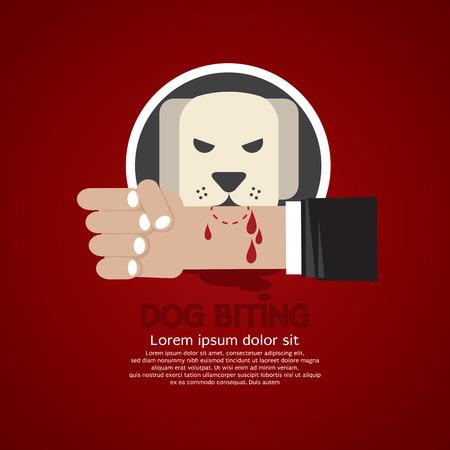dog bite: Dog Biting On Hand Vector Illustration