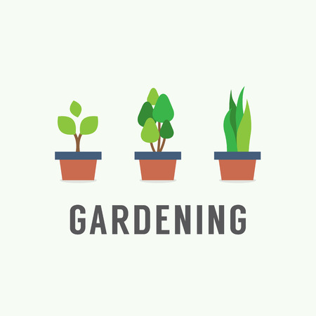 plant growth: Pot Plants Gardening Concept Vector Illustration