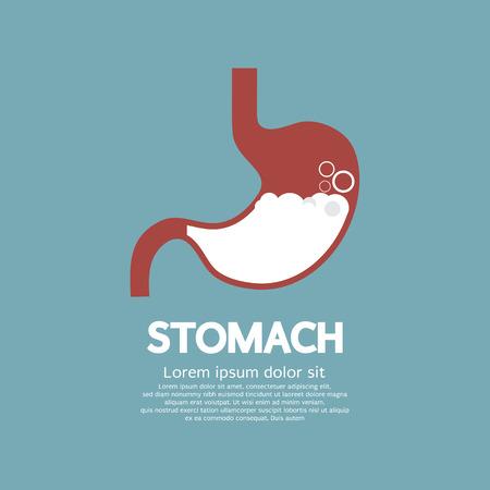 abdomen plano: Diseño plano estómago humano Ilustración Vector Graphic