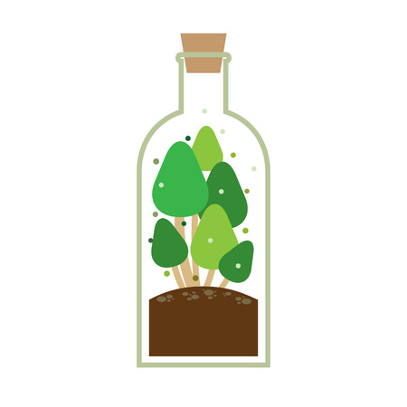 terrarium: Little Tree In A Bottle Vector Illustration Illustration