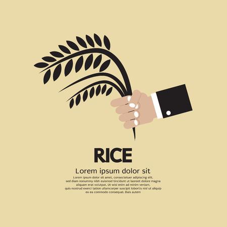 Flat Design Rice Ear In Hand Vector Illustration Vector
