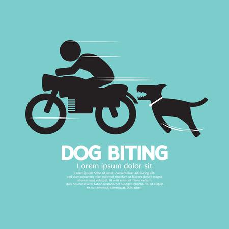 kampfhund: Hund beißt einen Mann auf einem Motorrad Vector Illustration Illustration