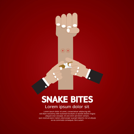 bites: Snake Bites On Forearm Vector Illustration