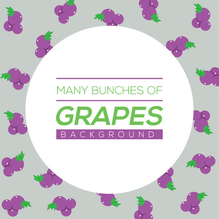 bunches: Many Bunches Of Grapes Background Vector Illustration