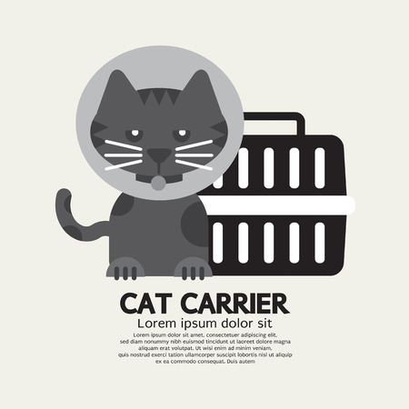 cat carrier: Cat Wearing Cone Collar With Carrier Vector Illustration Illustration