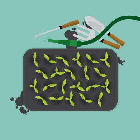 cultivate: Top View Of Cultivate Tray With Gardening Equipment Vector Illustration