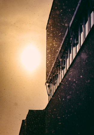 Warm sunlight in snow Фото со стока