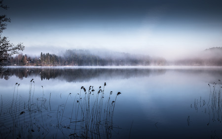 Very dense fog over the lake and forest in the north of Sweden in the early morning Фото со стока - 29162027