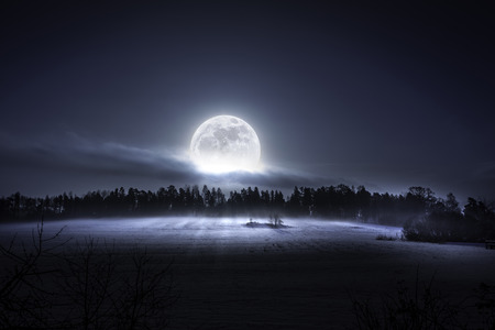 The moon rising over the forest and meadow in the cold and misty morning in the north of Sweden photo