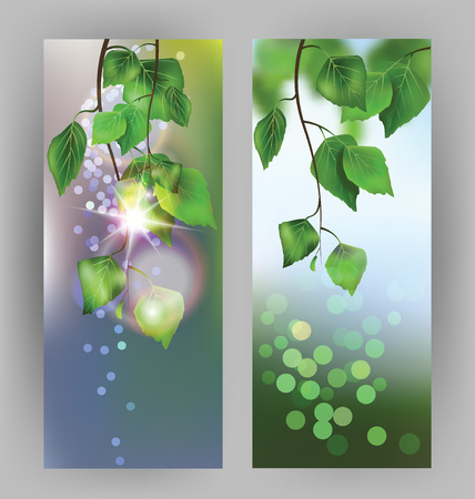 Banners with birch branches. Vector illustration 向量圖像