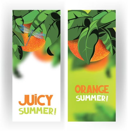 fruit tree: Bright banners with oranges on the tree with green leaves on the white background