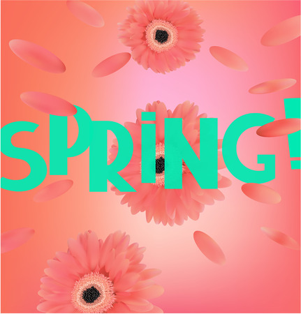 Spring banner with coral gerberas and levitating petals. Vector illustration