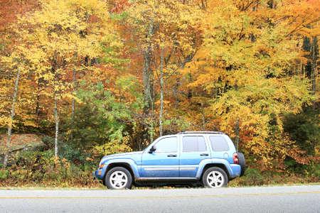 underbrush: Car parking on Blue Ridgr Parkway