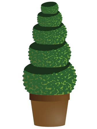 amenity tree in pot Vector