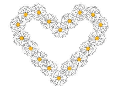marguerite: daisy heart
