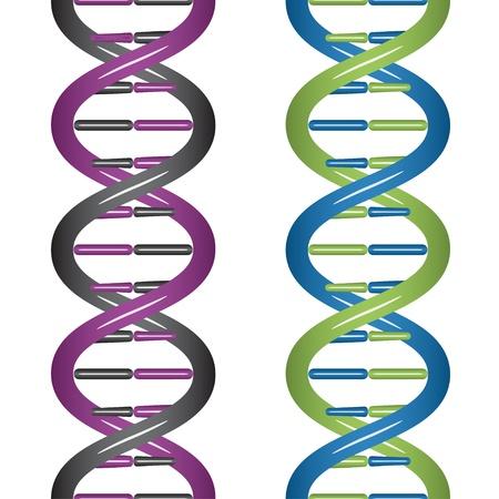 dna strands: vector seamless DNA