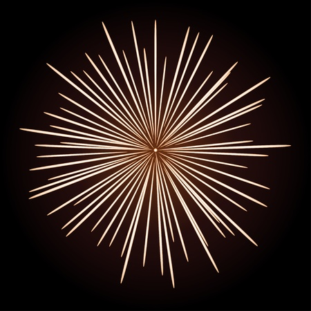 light burst: vector firework