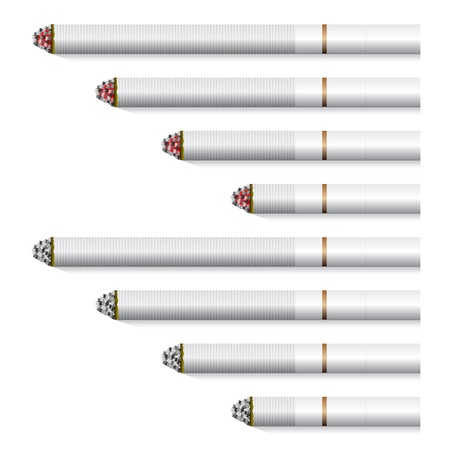 tobacco product: vector cigarettes - white filter