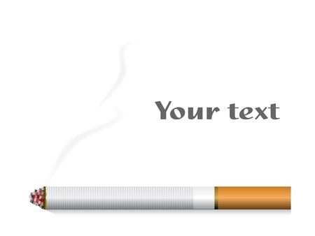 cigarettes: vector cigarette