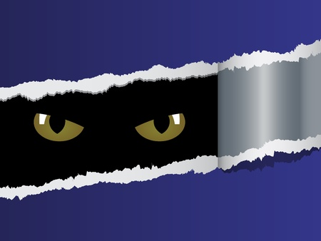 black panthers: vector view on feline eyes Illustration