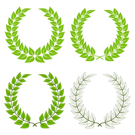 laurel leaf: vector de coronas de laurel Vectores