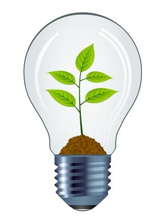 bulb: Vektor �ko Gl�hbirne isoliert